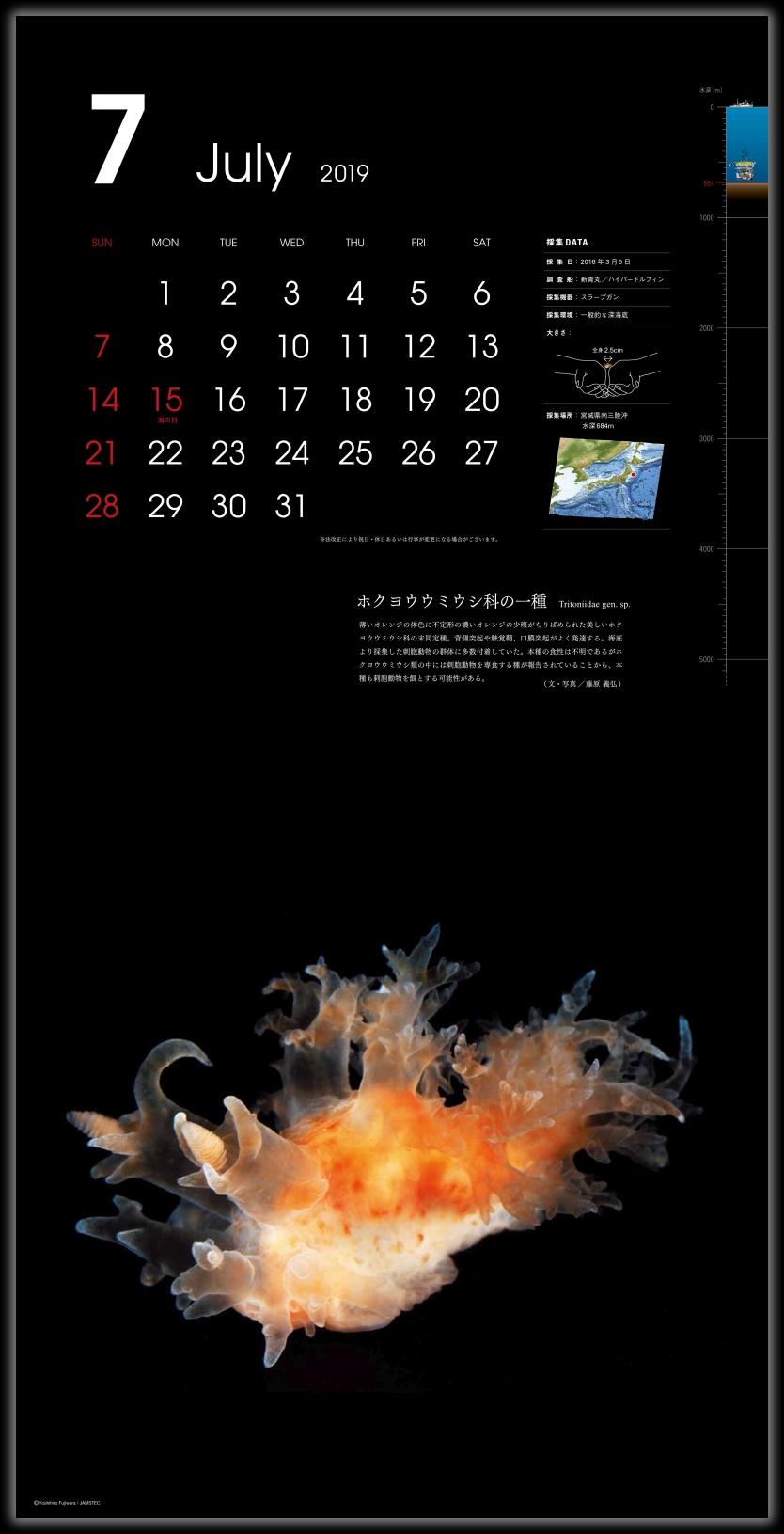カレンダー「深海生物図鑑」 201...